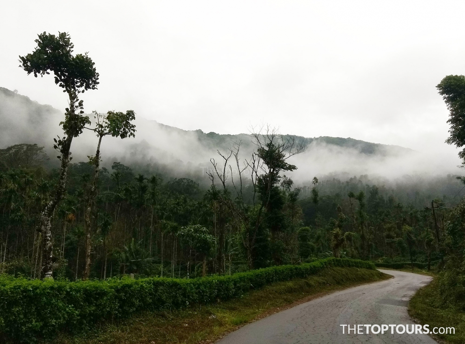 Chikmagalur on  Winter, Karnataka