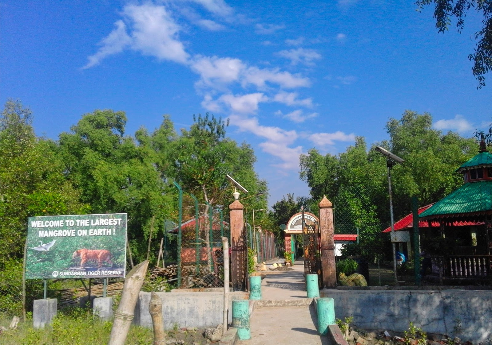 Top Place To Visit In Sundarban-Jhingekhali