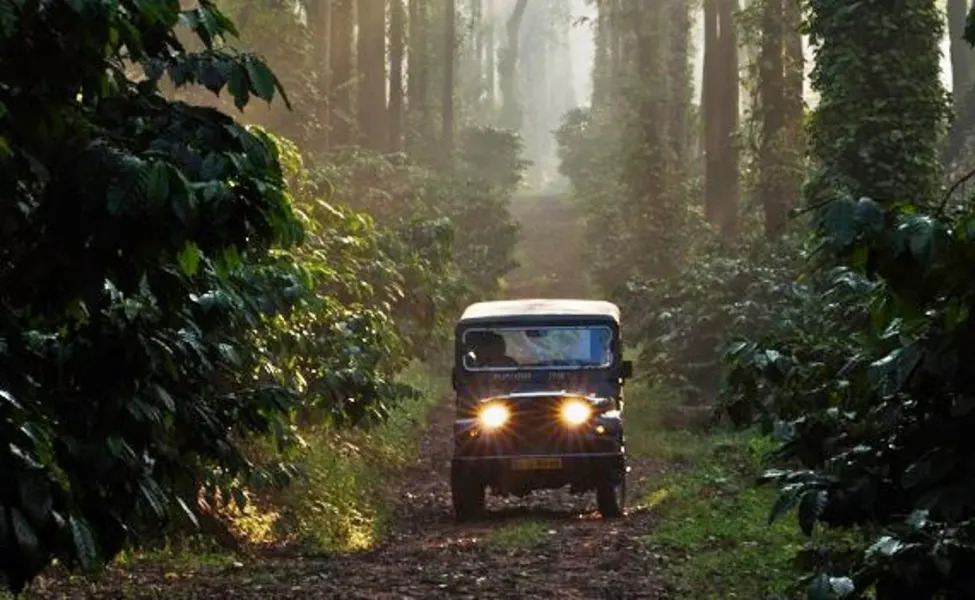 Mandalpatti Trek - Main Attractions Of Coorg Scotland of India