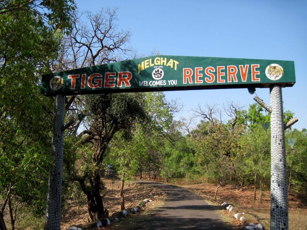 Top Most Place Near Gawilghur - Melghat Tiger Reserve