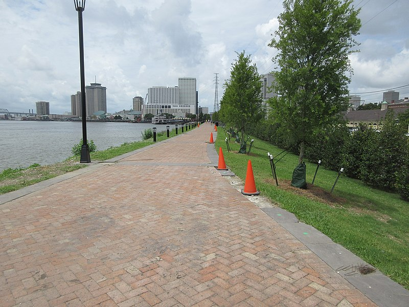 Mississippi Sidewalk in New Orleans