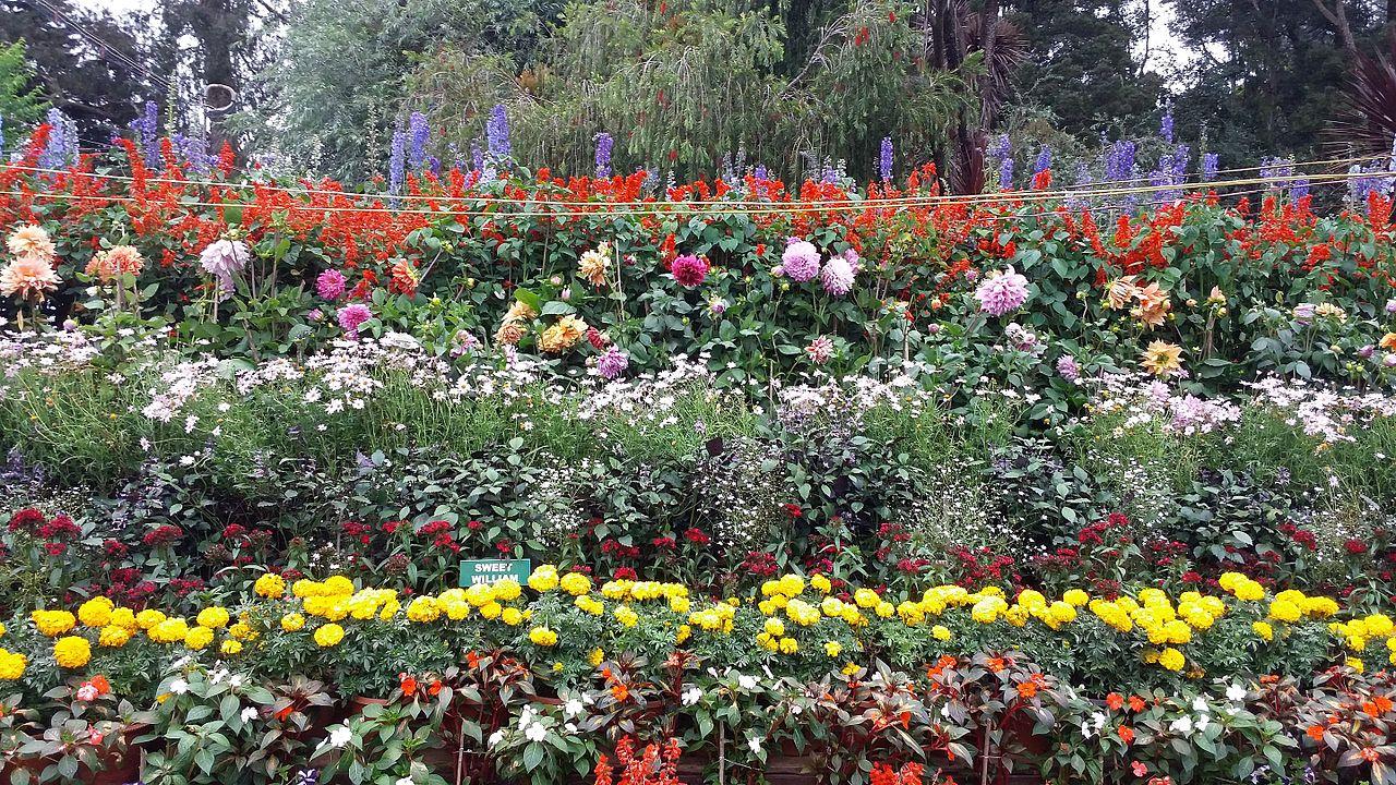Best Park in Coimbatore-TNAU Botanical Garden
