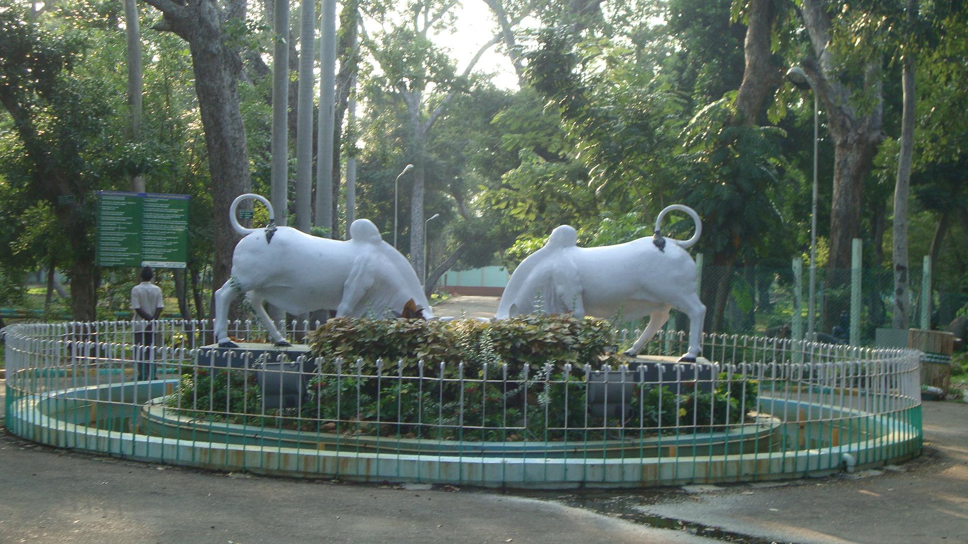 A Trip to the Puducherry Botanical Garden, Puducherry (Pondicherry)