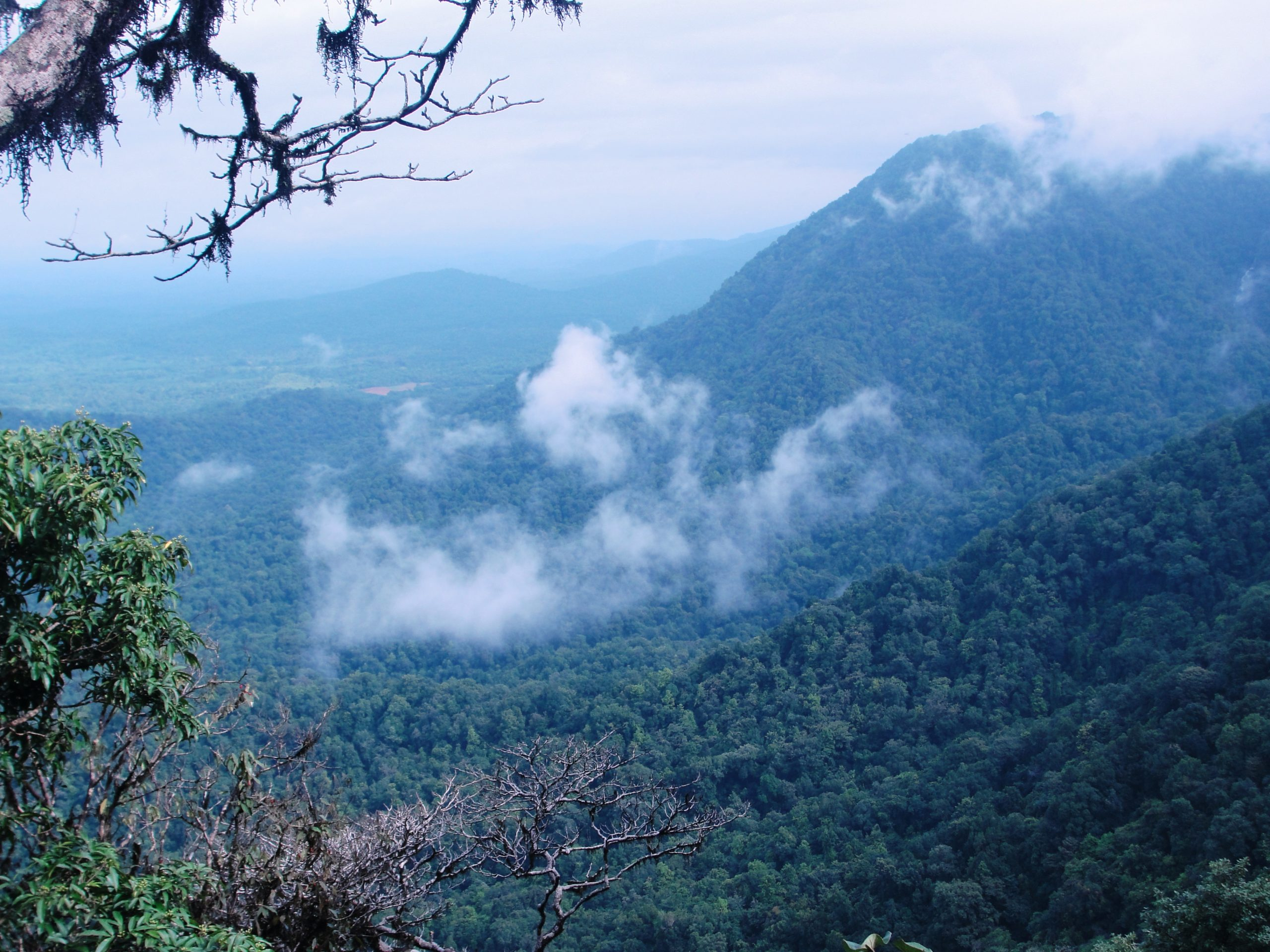 Agumbe - Beautiful Hill Stations Within 350 km From Goa