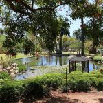 Awesome Parks and Natural Attractions in Santa Barbara