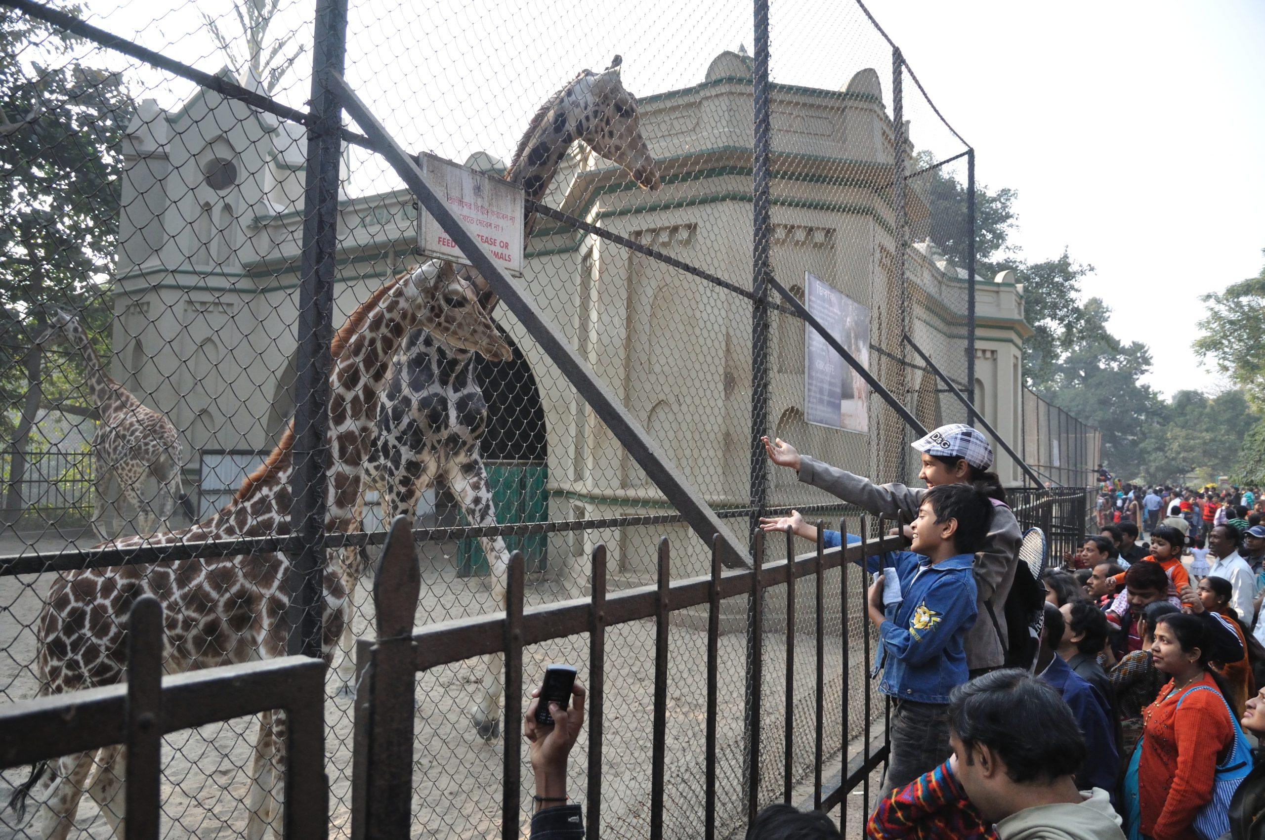Alipore Zoo - Best Places In Kolkata For Every First-Time Traveler