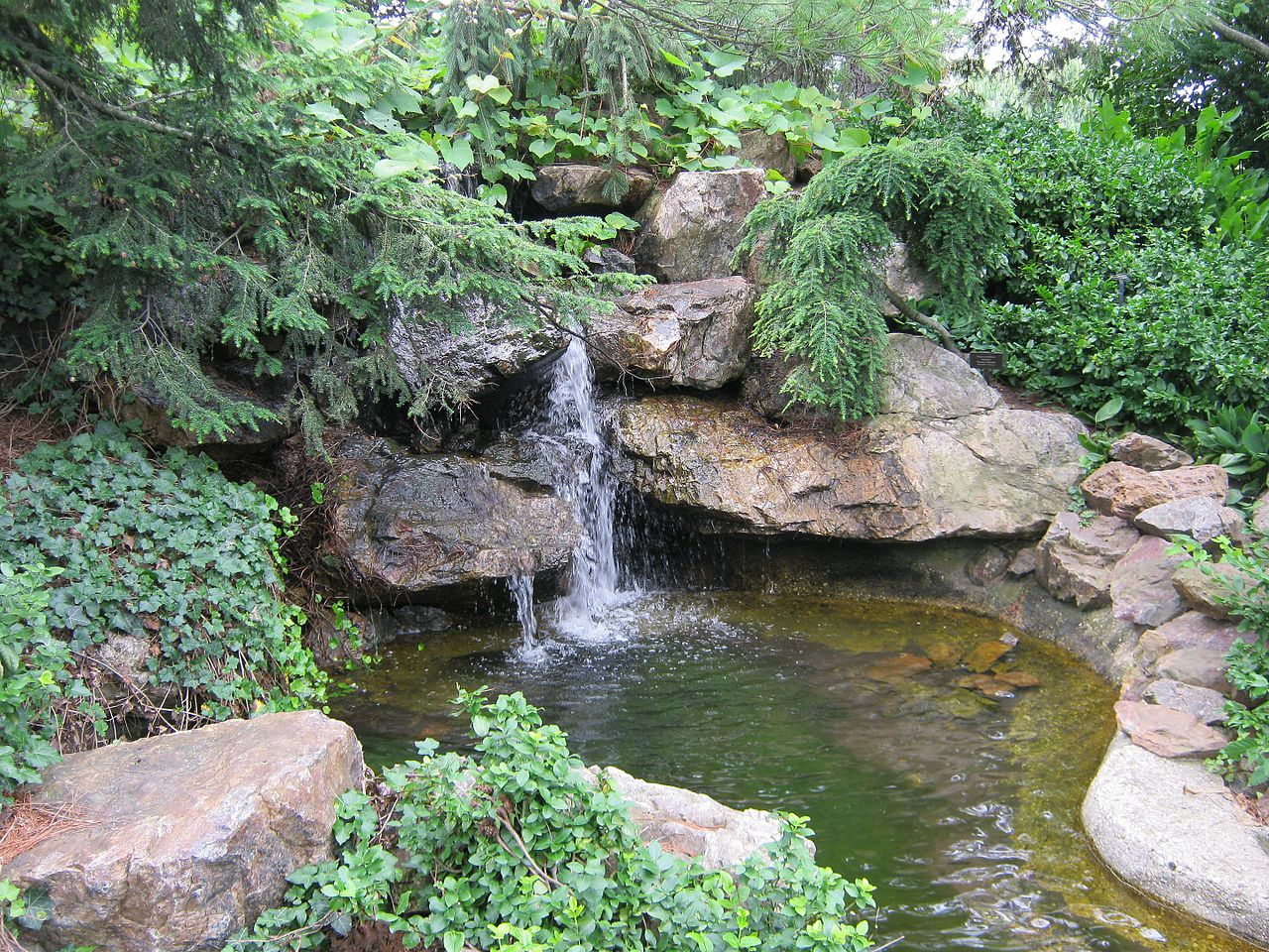 Must Visit Place Visit In Illinois-Anderson Japanese Gardens