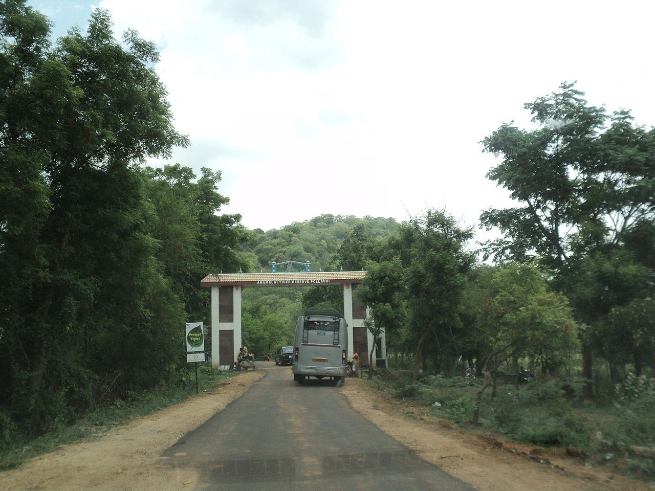 Amazing Ecotourism Destination In Tamil Nadu-Annamalai Sanctuary