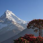 10 Top-Rated Sites in Annapurna For a Wonderful Trip in Nepal