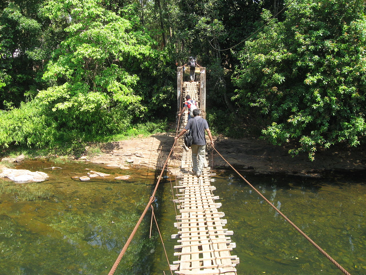 Incredible Wildlife Sanctuaries in Kerala