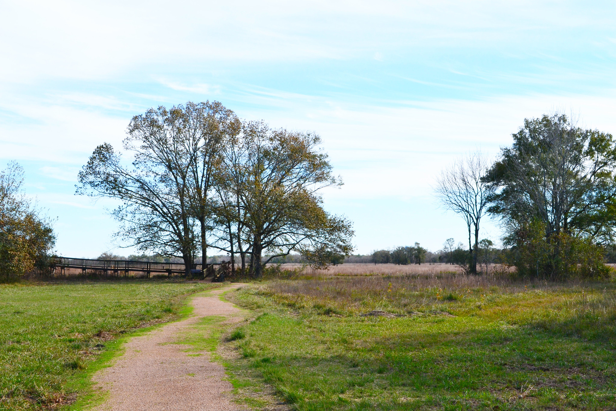 Attraction Hiking Spot in Houston-Armand Bayou Nature Center
