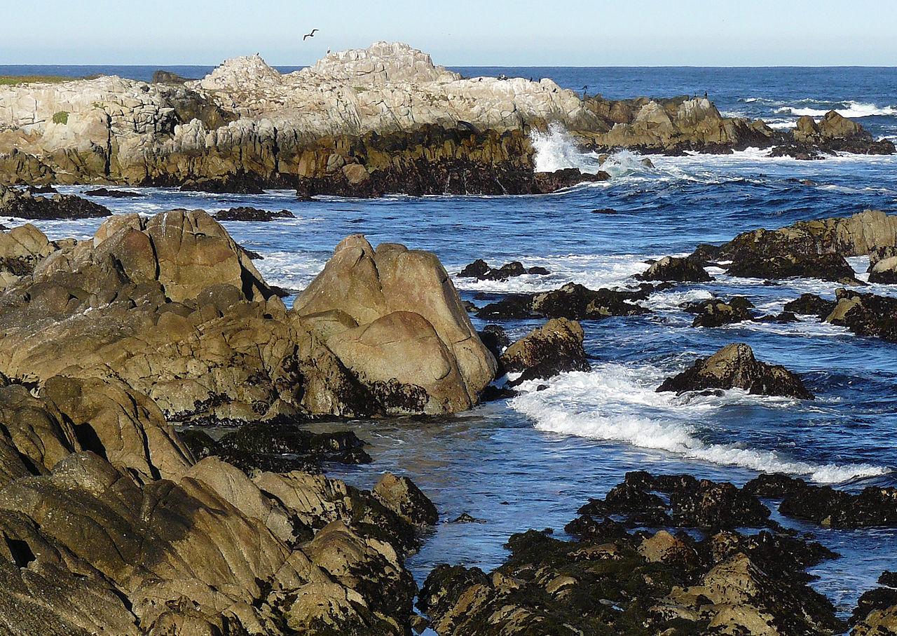 Attraction Destination in California for Road Trips-Asilomar State Beach, Monterey Peninsula