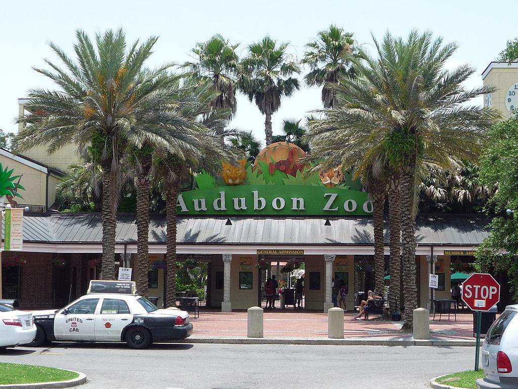 Audubon Zoo - Tourist Attraction in Louisiana