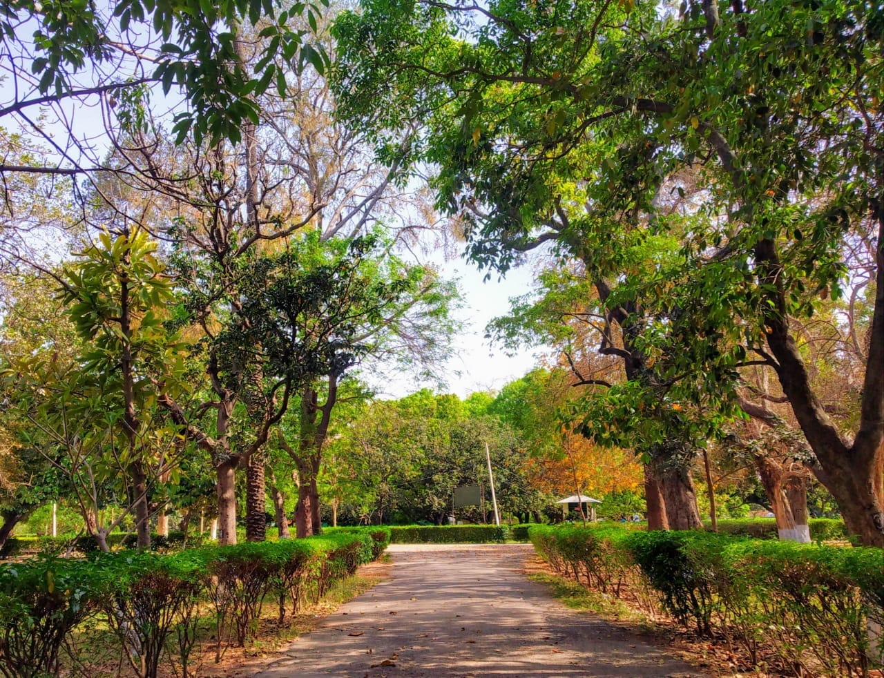 Attraction Tourist Place In Patiala-Baradari Garden
