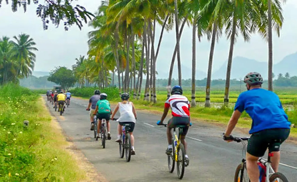 Beach and Backwater Cycling Adventure Sports In Kochi That One Must Try
