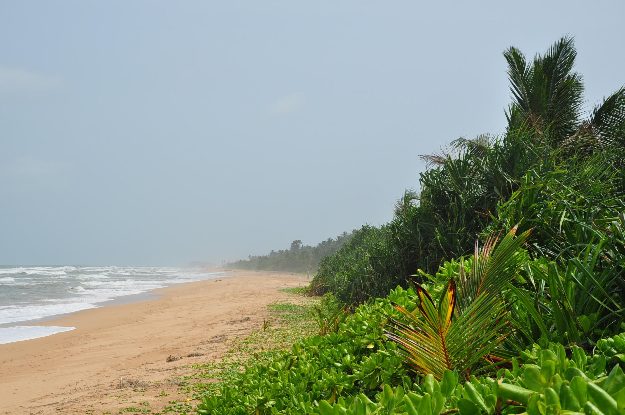 Bentota Beaches in Sri Lanka That Offer Gorgeous Sandy Shores
