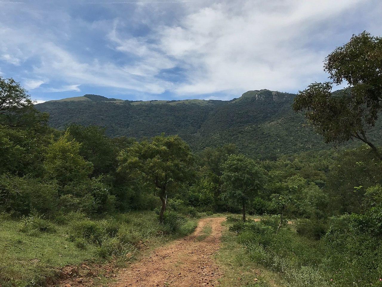Biligiri Rangana Hills-Getaways from Shivanasamudra