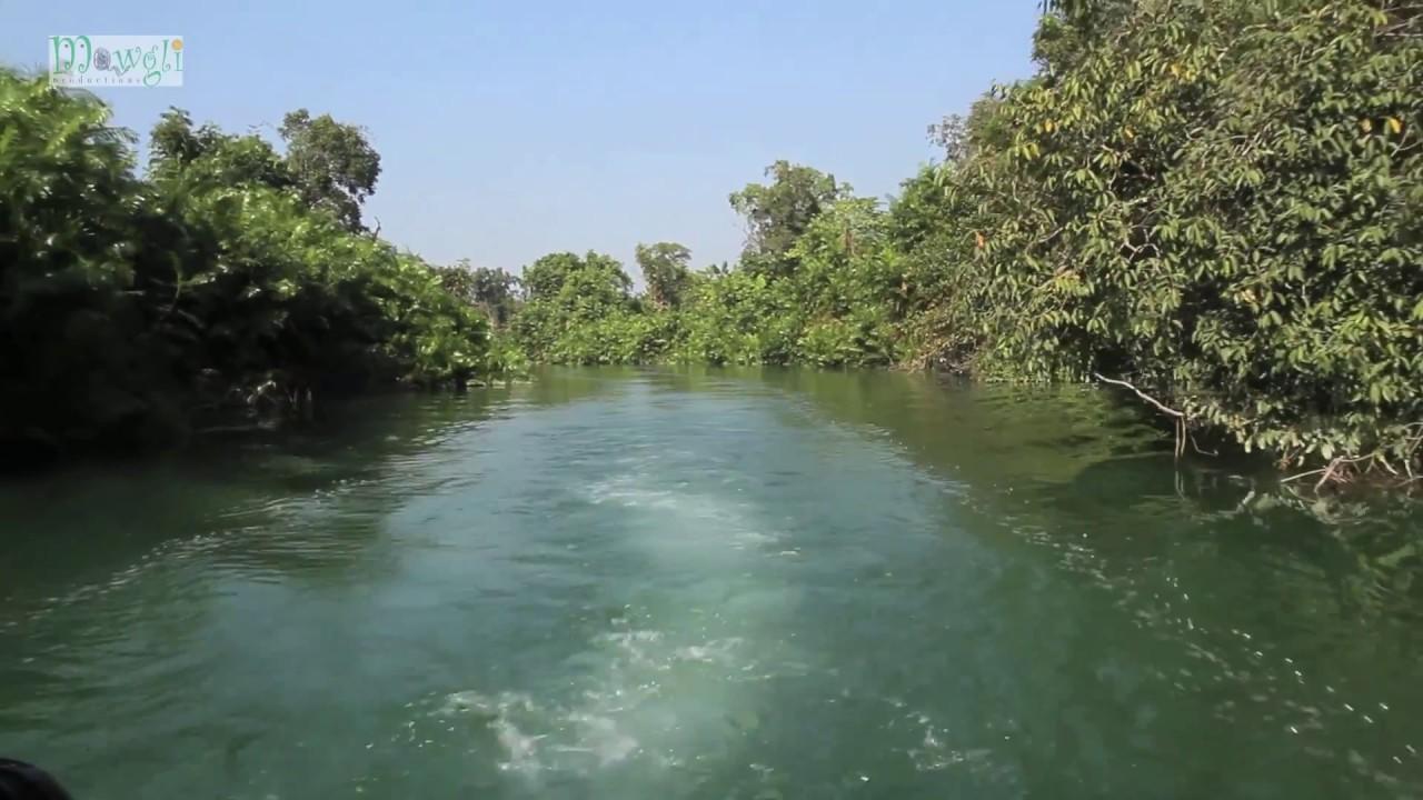 Boat Safari at Katarniaghat Wildlife Sanctuary