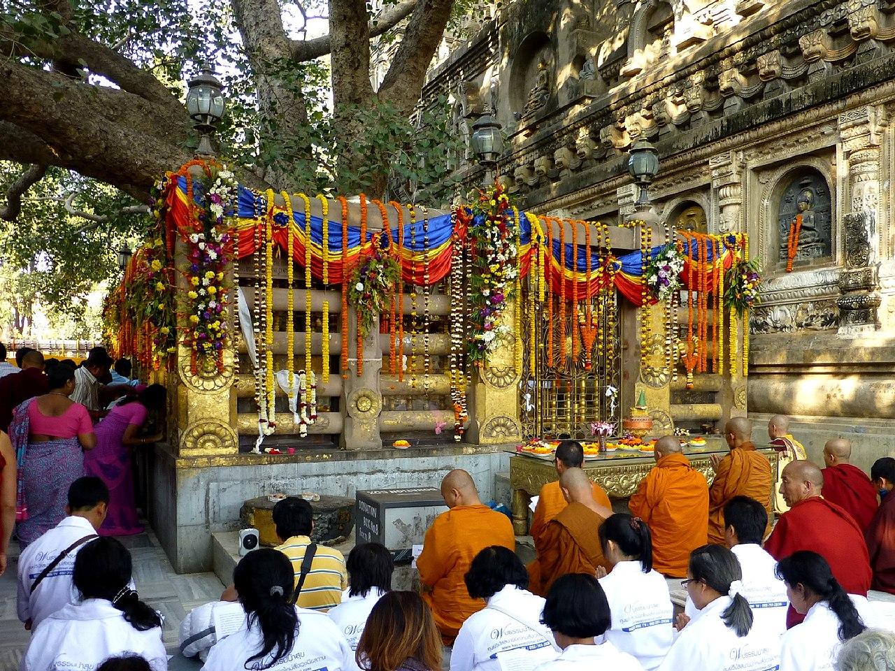 Nice Place to Visit In Gaya-Bodhi Tree