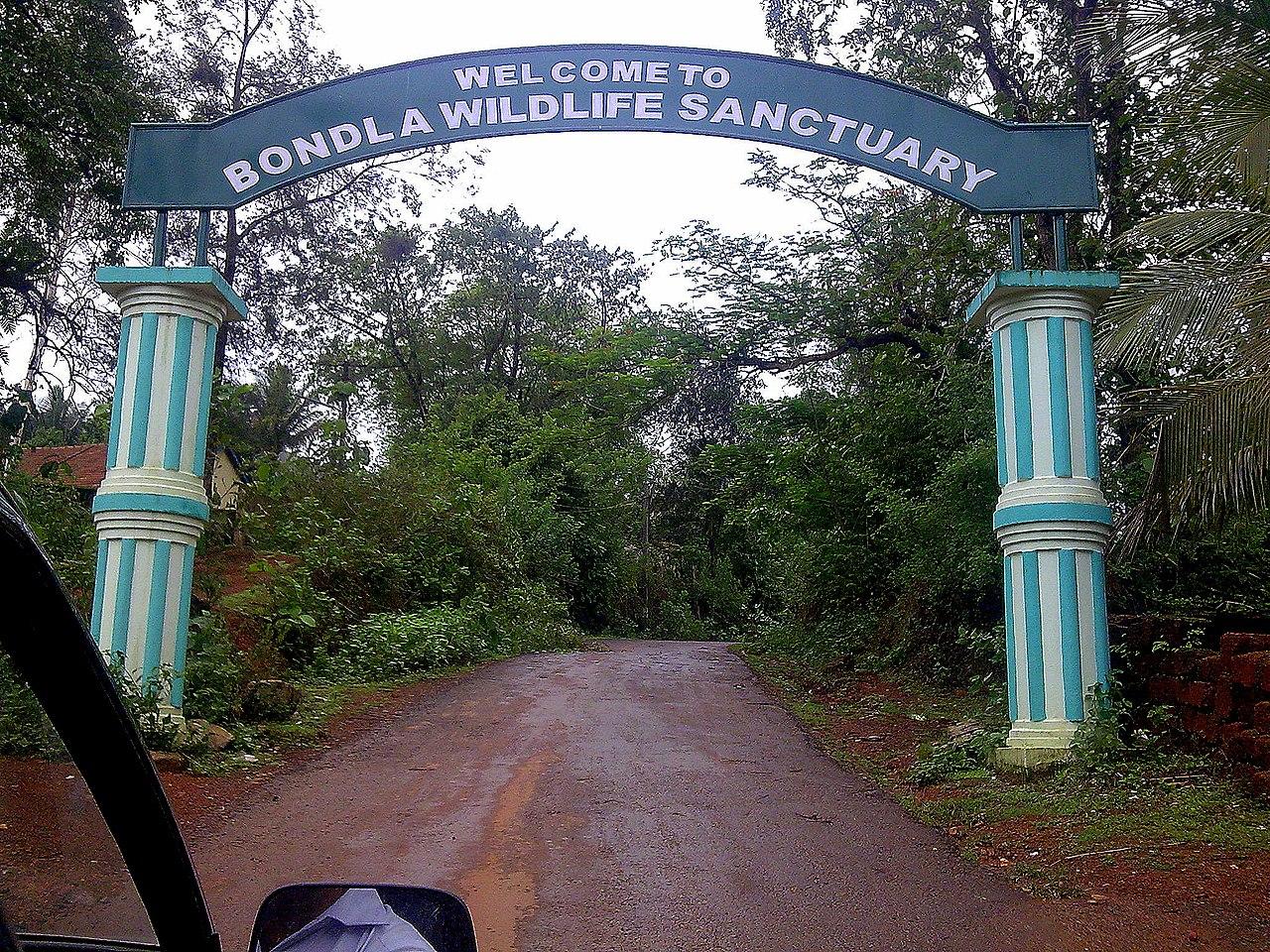 Amazing National Park to Visit in Goa-Bondla Wildlife Sanctuary