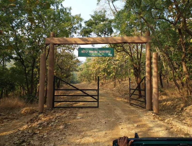 Top Weekend Destination from Amravati in Maharashtra-Bor Wildlife Sanctuary, Wardha