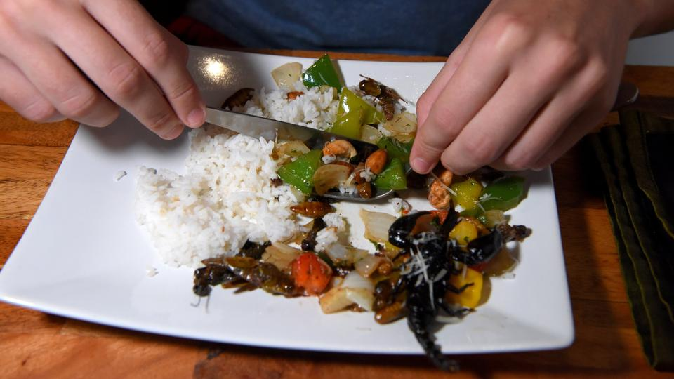 Bugs Café- Tantalize Your Taste Buds With Delicious Cambodian Cuisines At This Best Restaurants