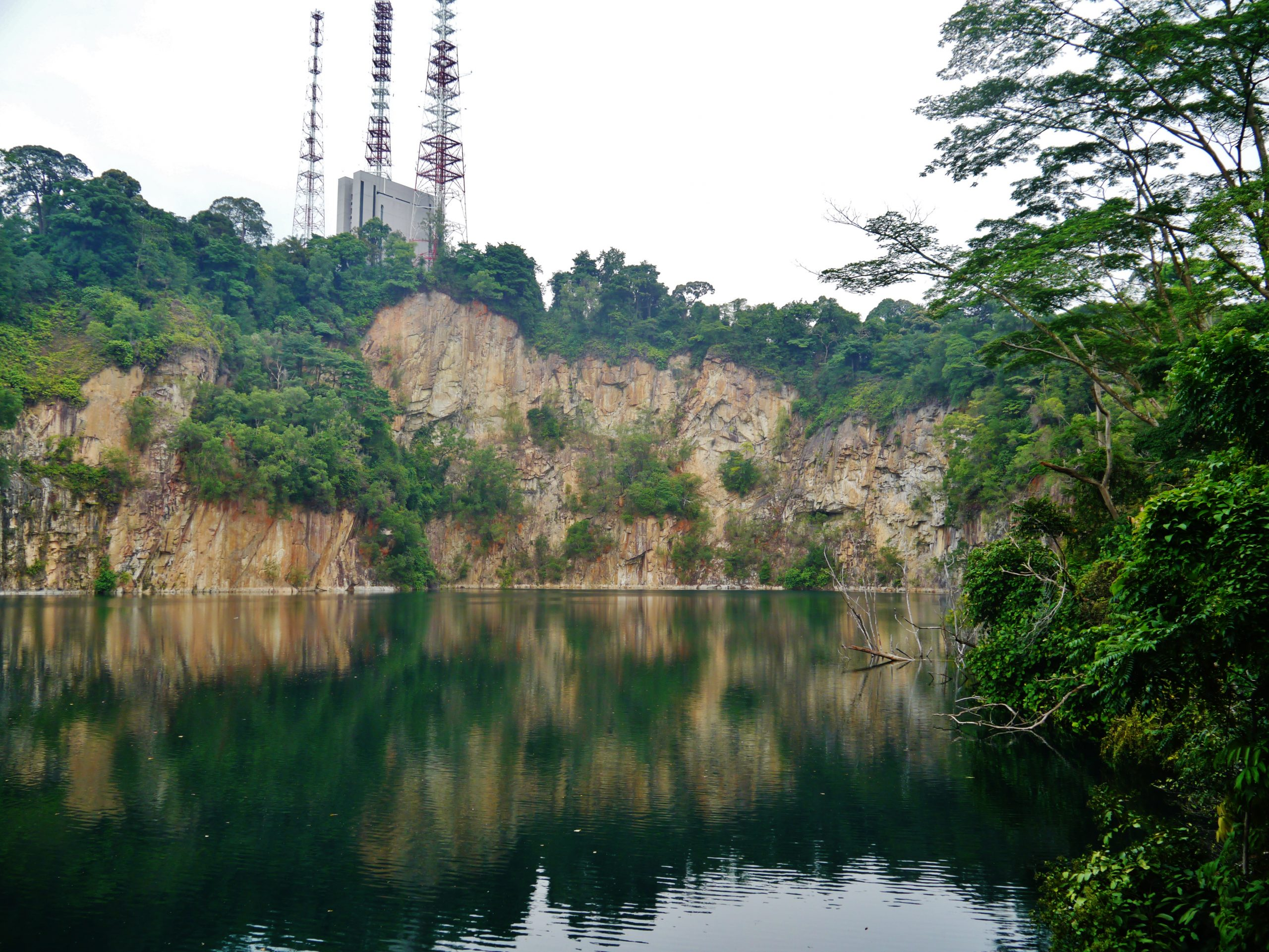 Bukit Timah Hill - Amazing Hill or Highest Natural Point in Singapore