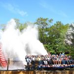 Busch Gardens - Top-Rated Sight-Seeing Destination in Tampa