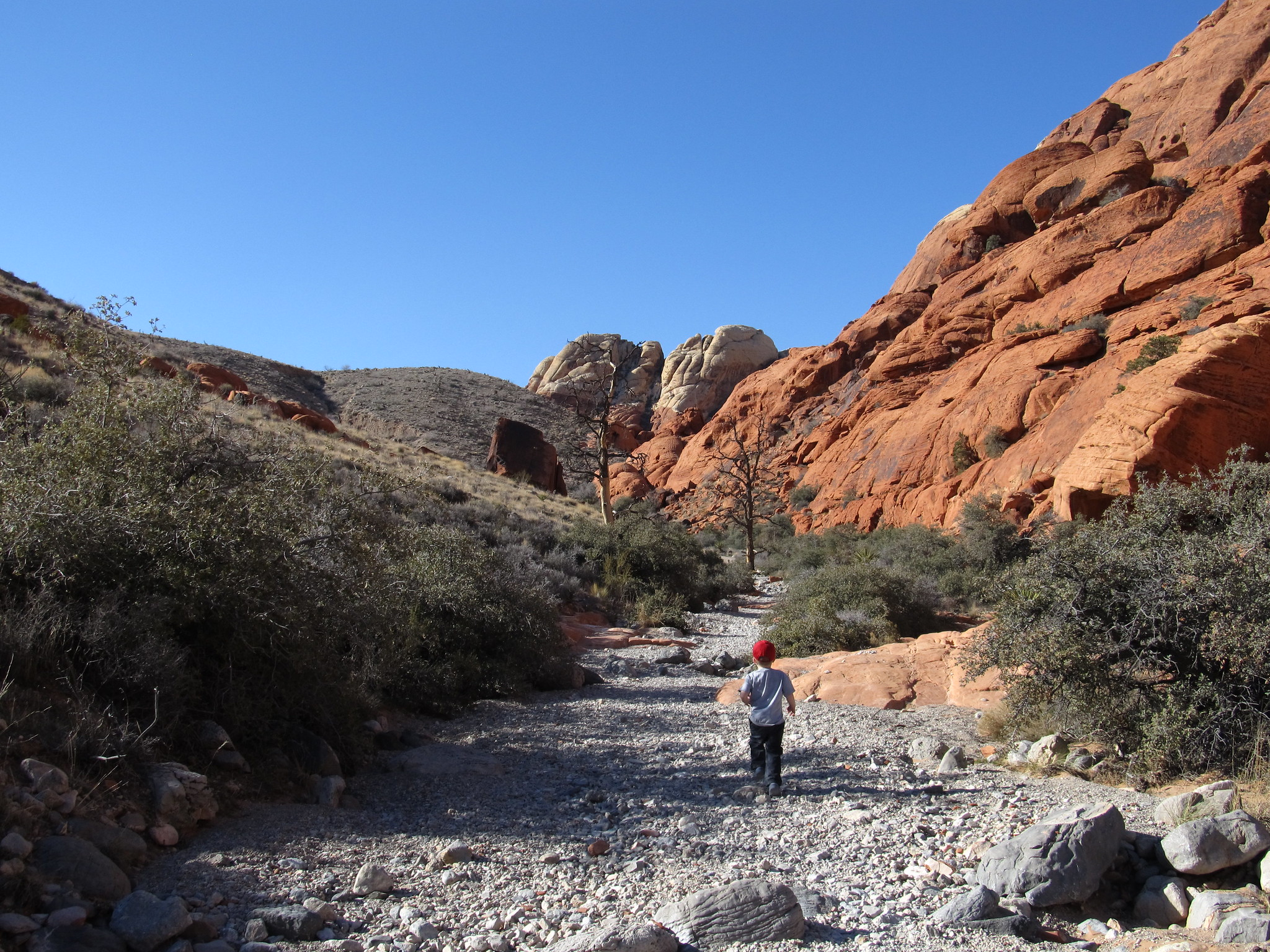Must Visit Place In Nevada, Red Rock Canyon National Conservation Area-Calico Hills