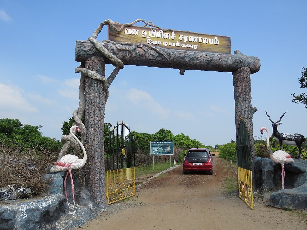 Ecotourism Destination In Tamil Nadu-Calimere Wildlife and Bird Sanctuary
