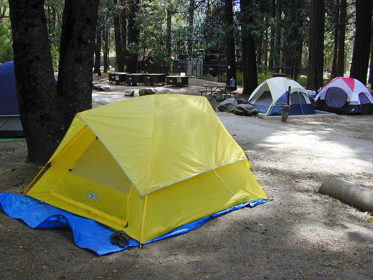 Must-Visit Attraction of Yosemite-Camping in the Yosemite National Park