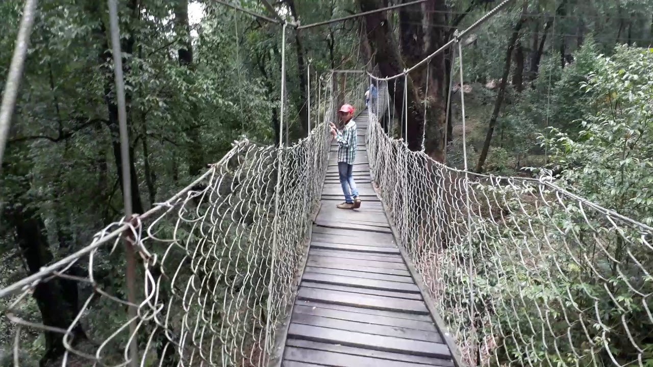 Canopy Walk - Top Sightseeing Spot in Loleygaon in West Bengal
