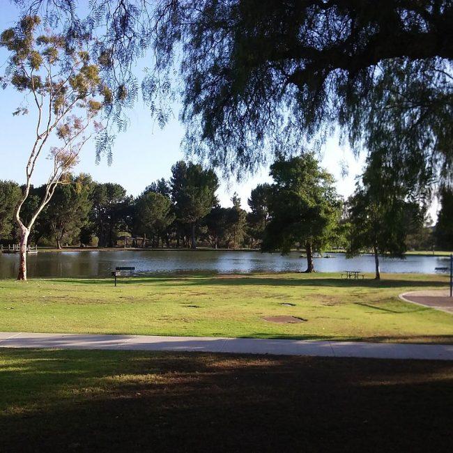 Famous National, State, & Regional Parks Near Anaheim