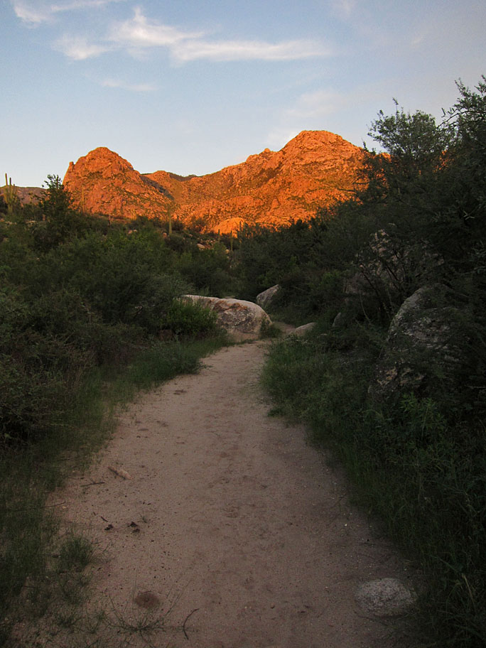 Beautiful Place To Visit In Tucson-Catalina State Park