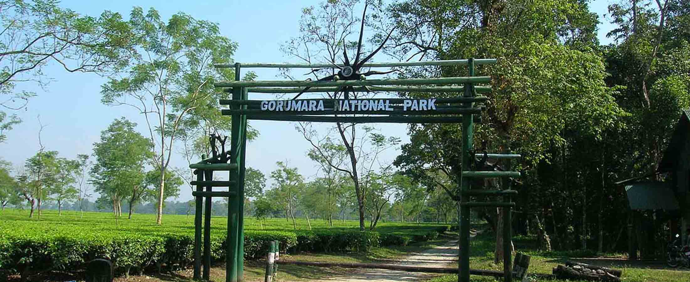 Chalsa - Gorgeous Places Near Kolkata to Spend in Weekends