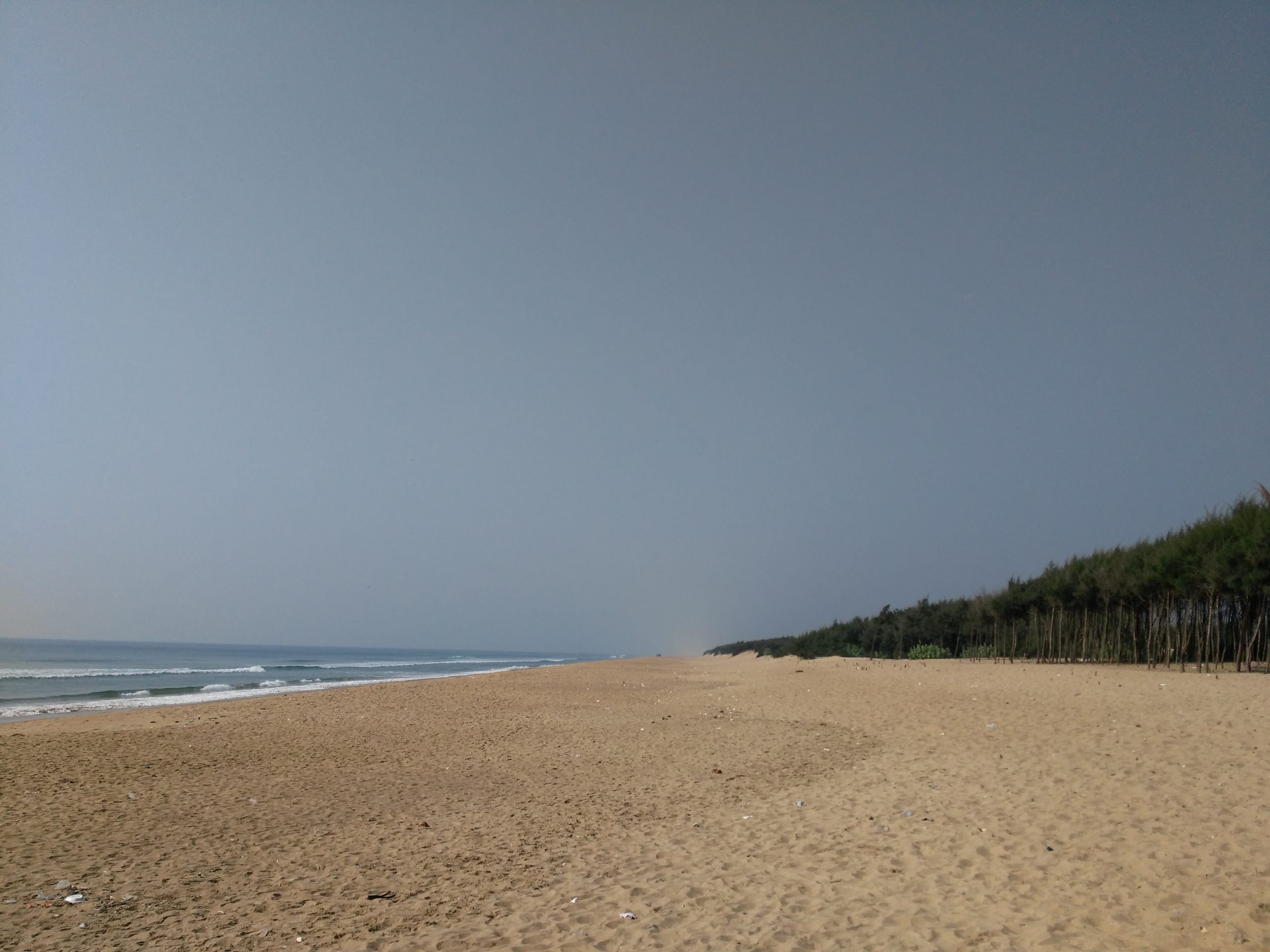 Chandrabagha Beach - Popular Place To Visit In Bhubaneswar
