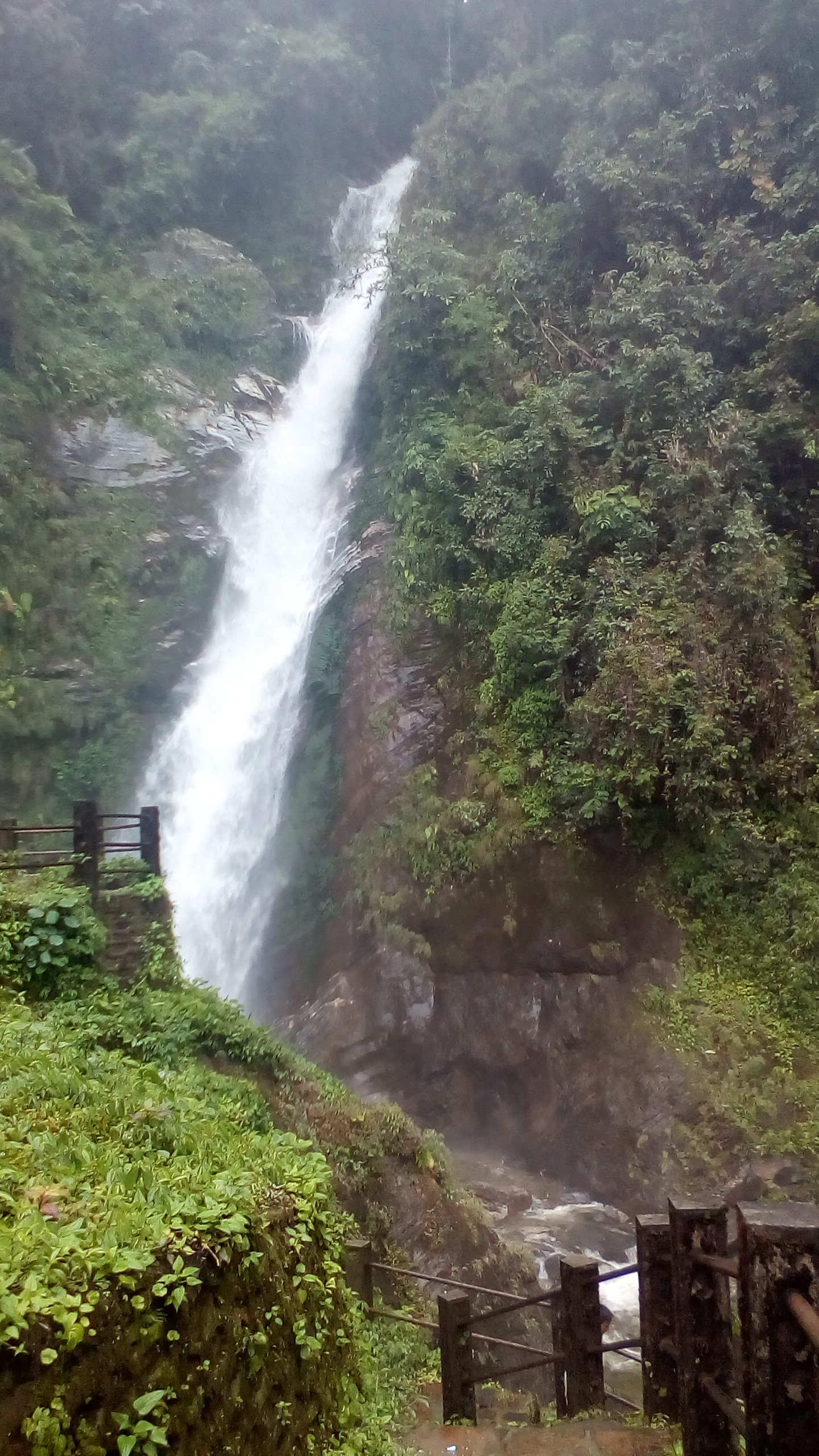 Attraction Place in Lava That Every Traveler Must Visit-Changey Waterfall