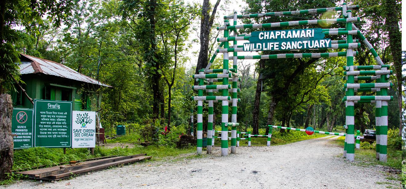 Top Place to Visit in Lataguri-Chapramari Wildlife Sanctuary