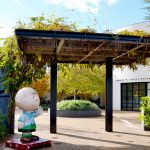 Charles M. Schulz Museum - Must Visit Place in Santa Rosa and Santa Ana