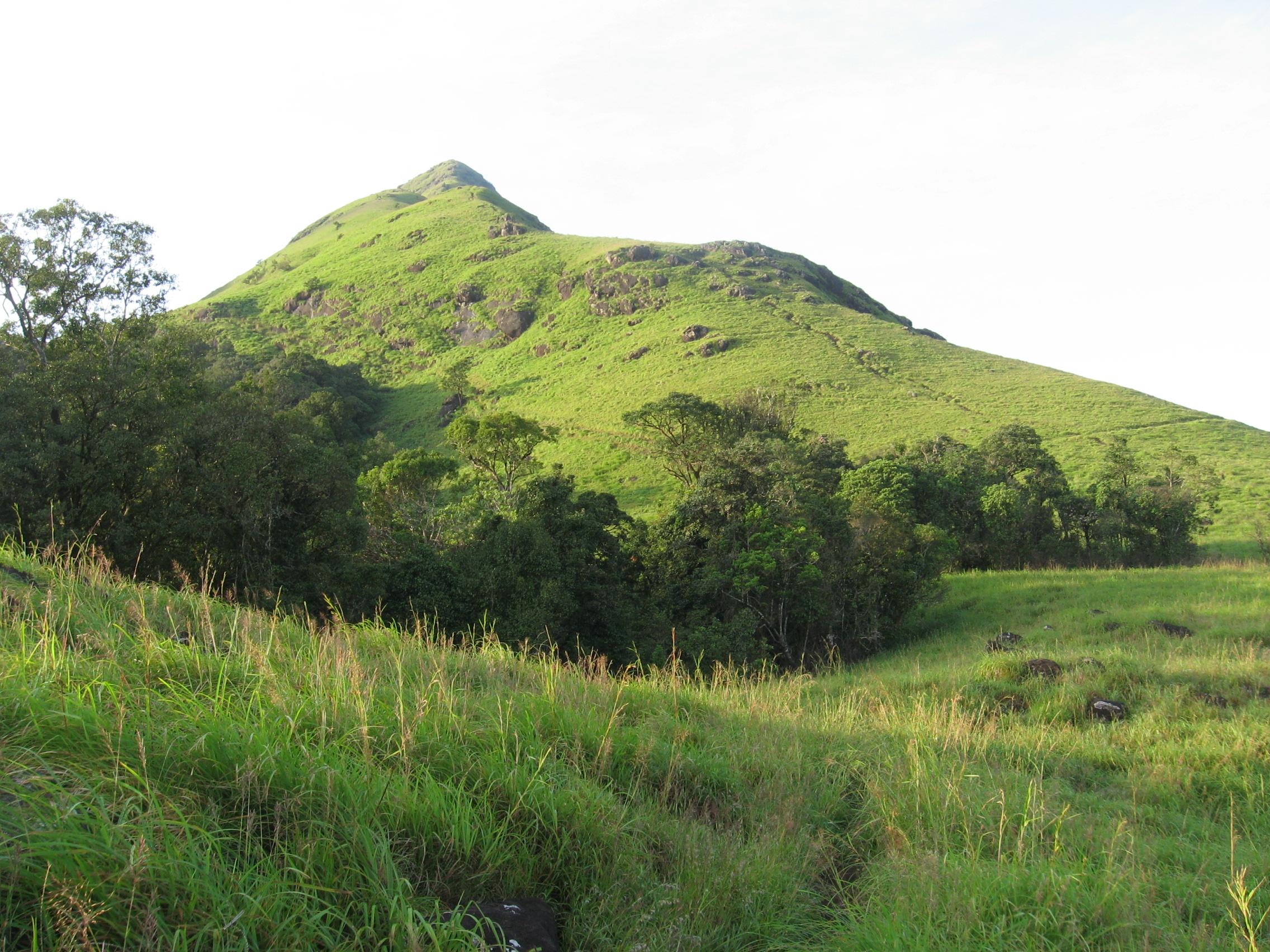 Chembra Peak Must-Visit Places During Wayanad Trip