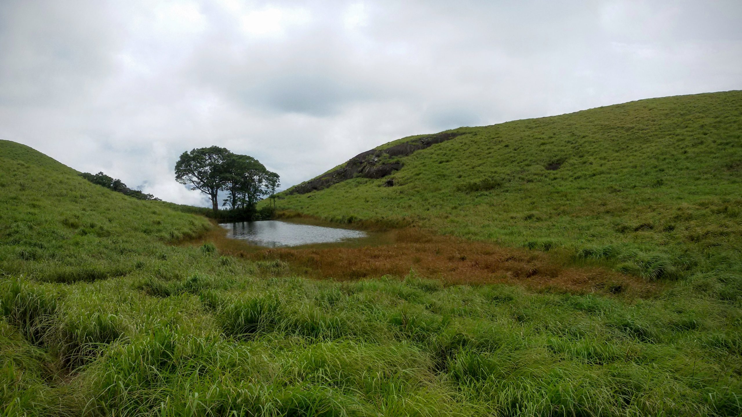 Place to Visit in Wayanad - Chembra Peak