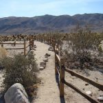 7 Most Popular Things You Can Do When In Pioneertown
