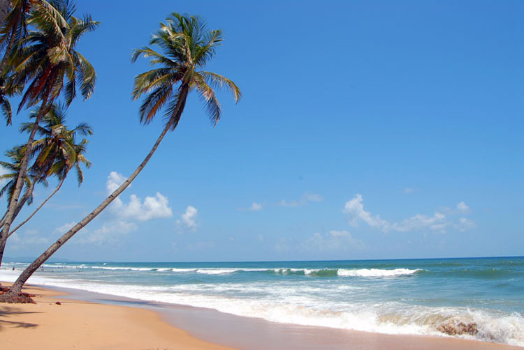 Quaint Beache in South Goa - Colva Beach