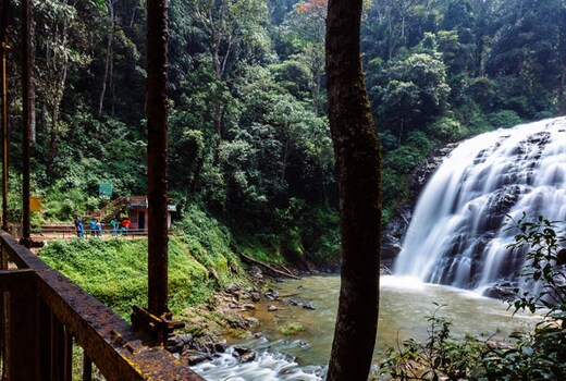 Coorg Estate Stay With Waterfall - Coffee Estate Stays In Coorg, The Scotland of India