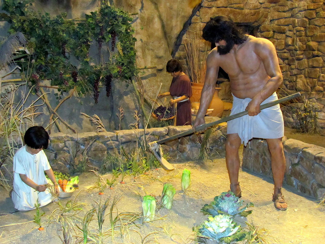 Beautiful Place to Visit In Kentucky's-Creation Museum