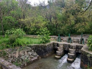 Amazing Places to See and Things to do Around Dachigam in J&K