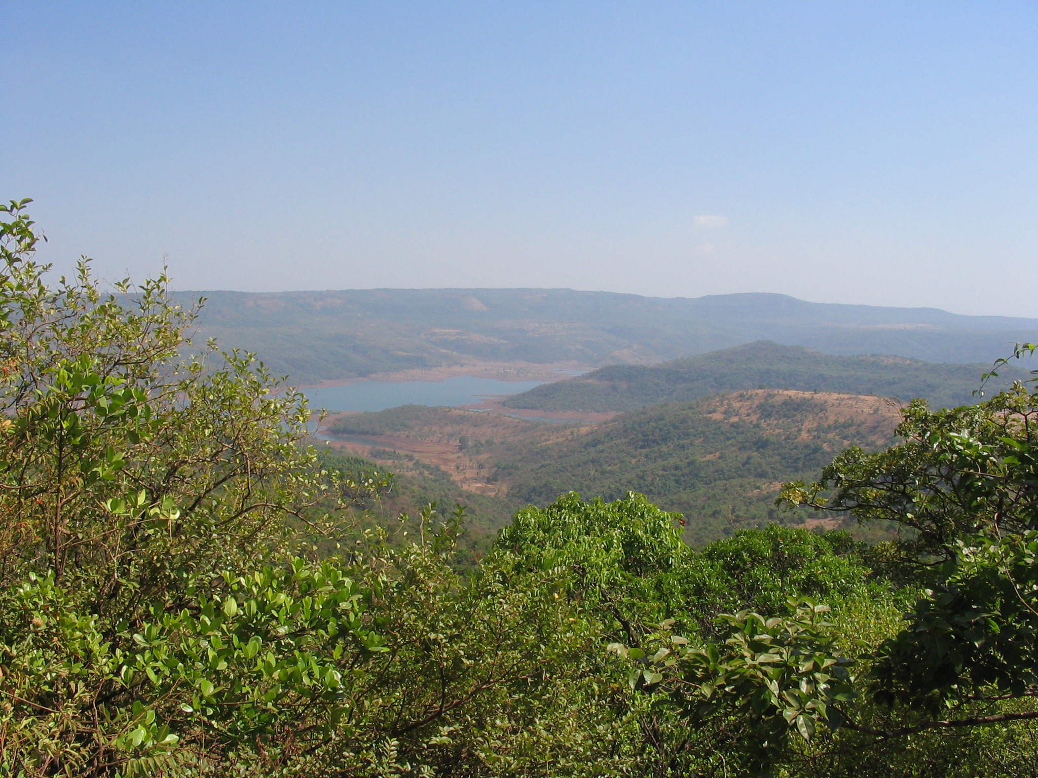 Sightseeing Place To Visit Near Vishalgad Fort-Dajipur Wildlife Sanctuary