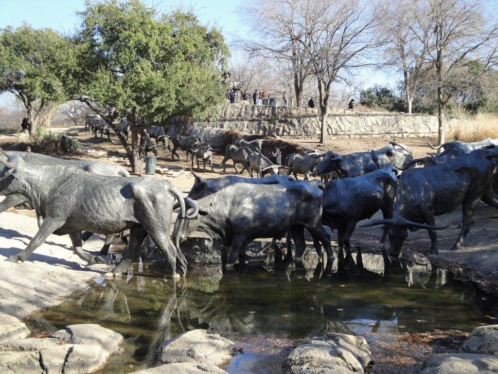 Amazing Destination to Visit In Dallas City-Dallas Cattle Drive Sculptures