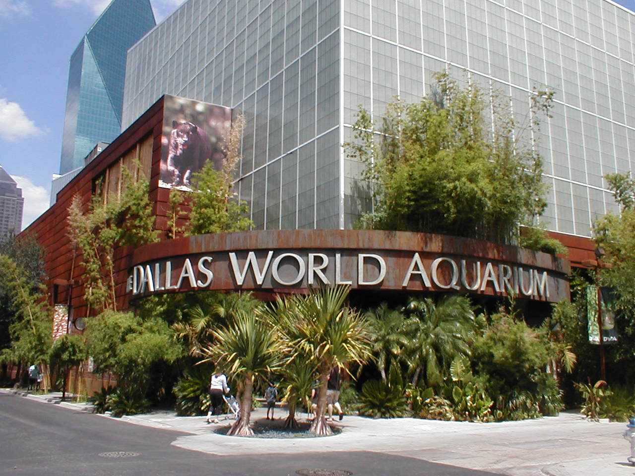 Beautiful Place to Visit In Dallas City-Dallas World Aquarium