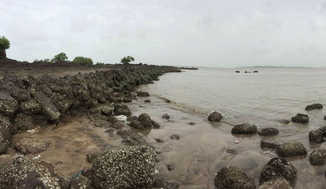 Best Suburban Mumbai Beach You Must Visit-Dana Pani (Malad)